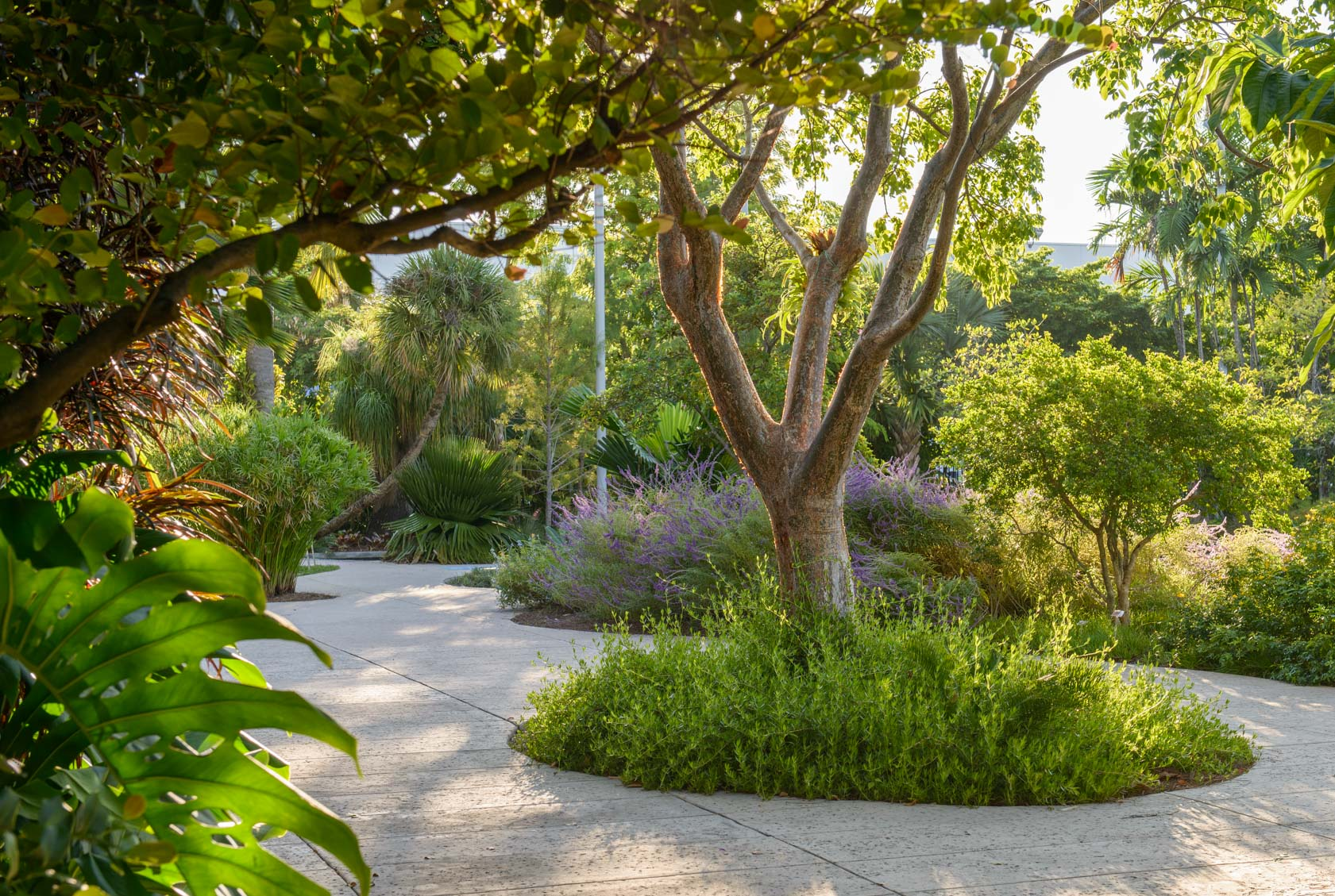 Miami-Beach-Bontanical-Garden-7